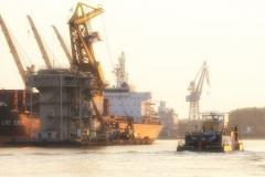 yellow haze [ port of amsterdam ] © remmert bolderman photography